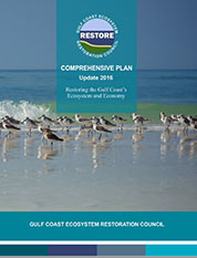 Comprehensive Plan Cover Sheet