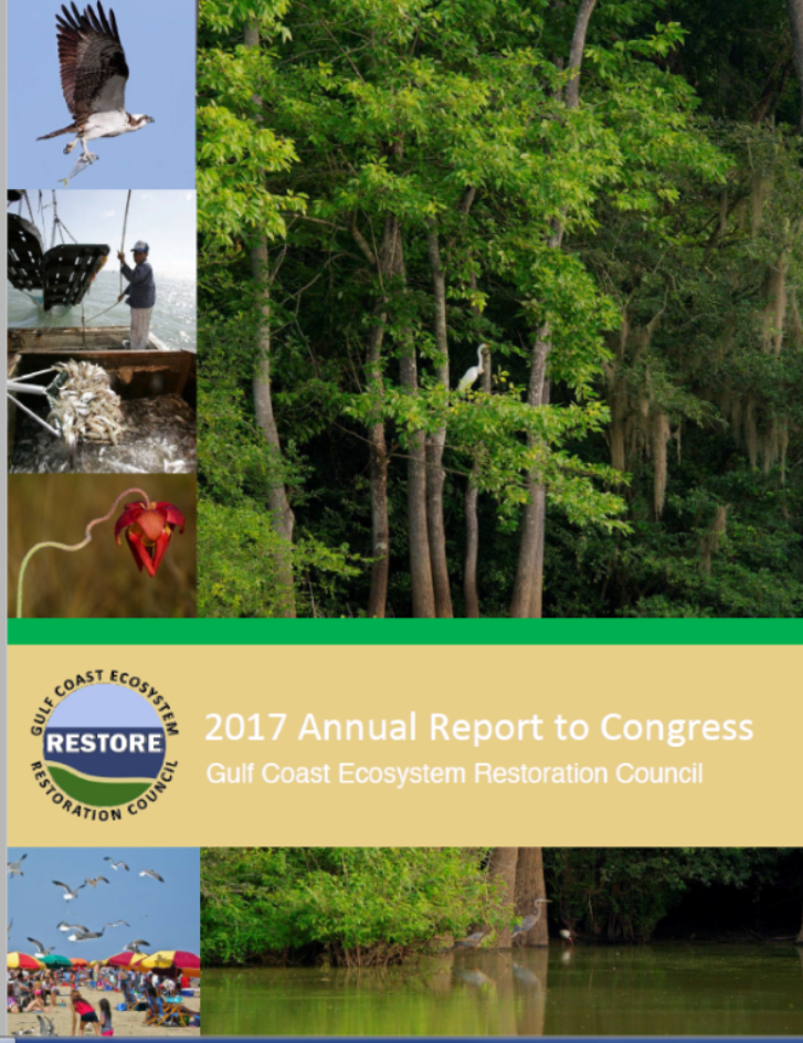 2017 Annual Report to Congress Cover