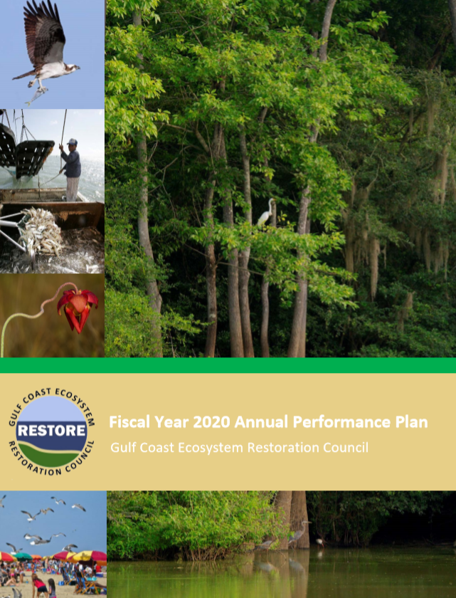 Fiscal Year 2020 Annual Performance Plan Report Cover