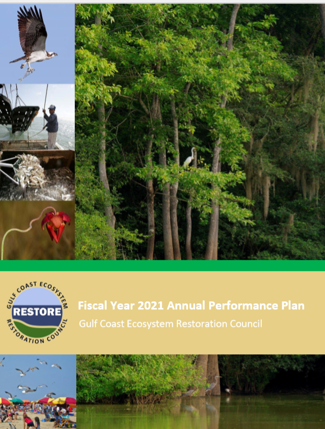 Fiscal Year 2021 Annual Performance Report
