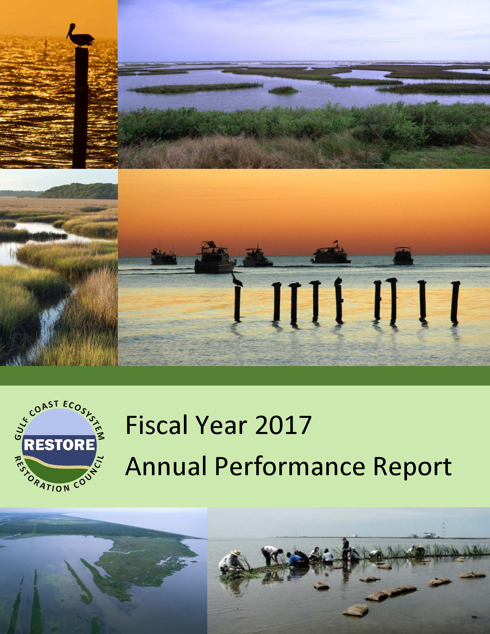 Annual Performance Report Cover 2017