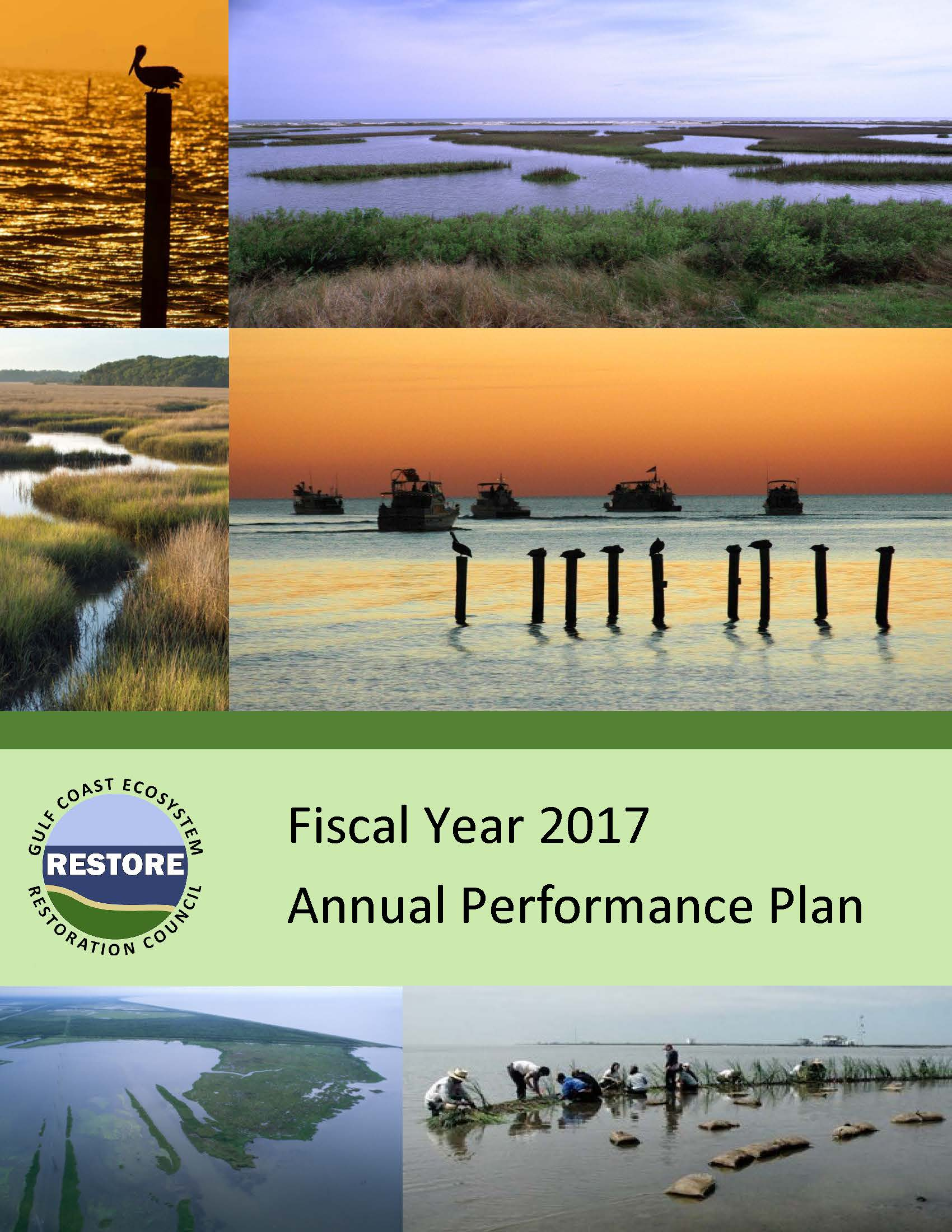 Cover of 2017 Annual Performance Plan